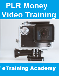 PLR Money Video Training